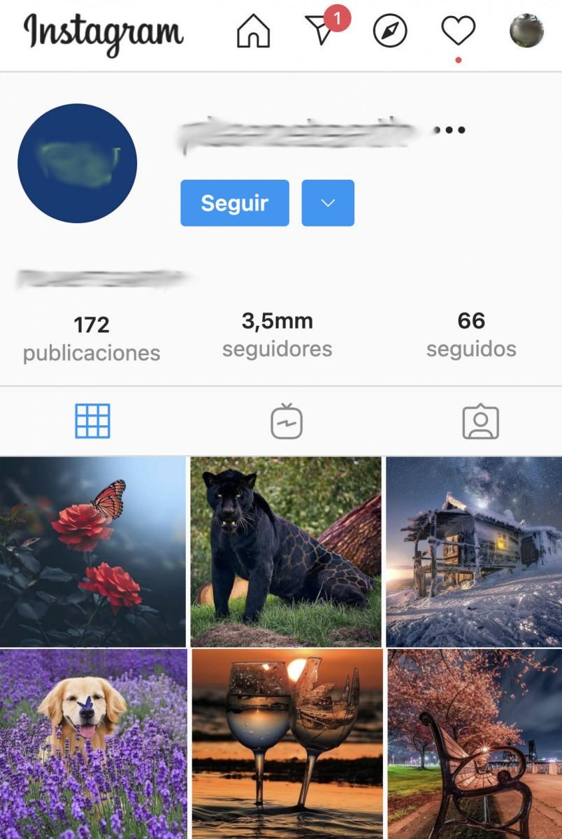 seguidores bot instagram gratis